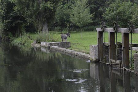 Moulin de la Planche